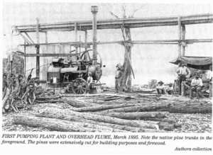 Lyrup labour colony 1895: pump and water channels