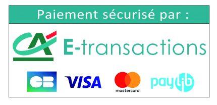 Logo ca-e-transactions-cb-visa-mastercard