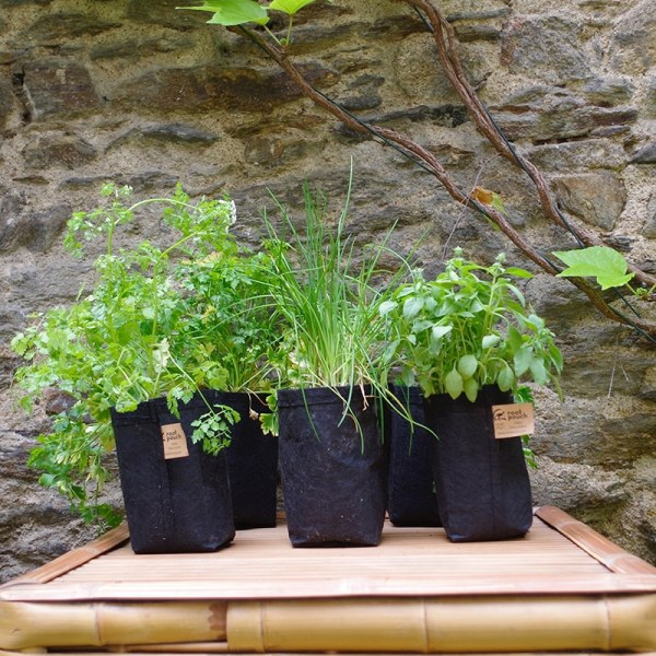 lot de 5 pots pour aromates cultiver des herbes aromatiques en int rieur comme en ext rieur. Black Bedroom Furniture Sets. Home Design Ideas