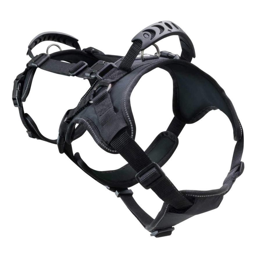 best labradoodle harness FrontPet