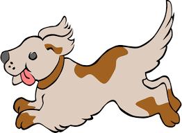 can labradoodles run long distances