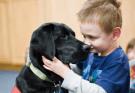 black-labrador-retriever-cuddling-with-little-boy