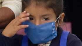 influenza (1)