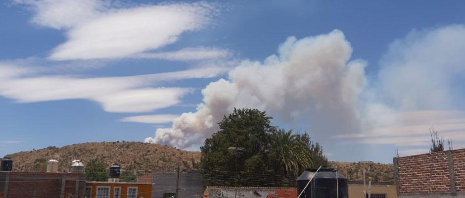 Casi Controlado el Incendio en la Sierra de San Miguelito: Erika Briones