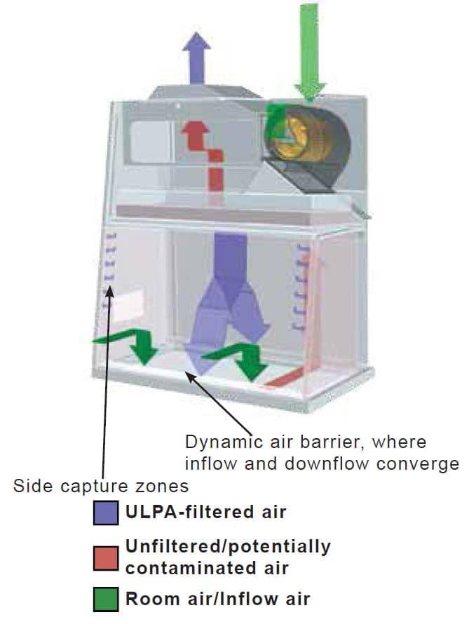 Biological safety cabinet fume hood