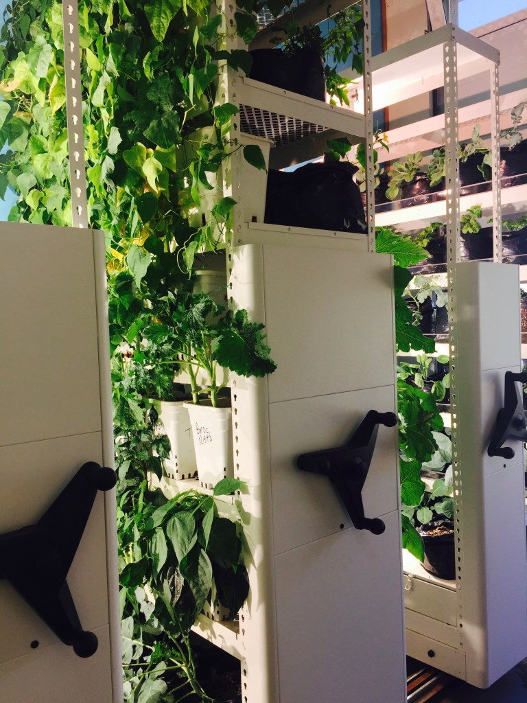 Mobile shelving growing plants