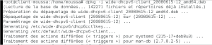 Configuration serveur DHCPv6, DNS et APACHE en IPv6