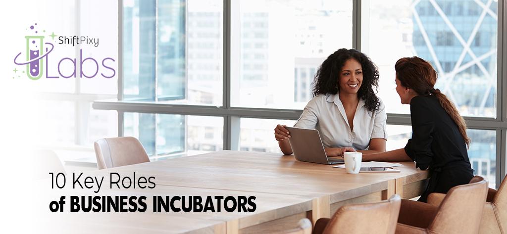 10 Key Roles of Business Incubators