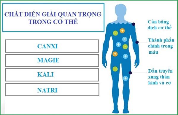 Phương pháp kiểm tra nhanh các ion: Ca, K, Mg, Na