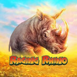 Raging Rhino high volatile slot