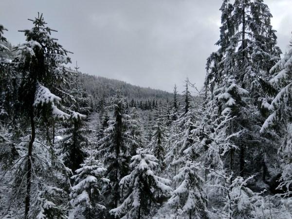 Krajobraz górskiego pryprószenia
