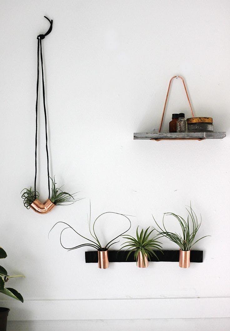 6 - 7 ideas DIY modenas y minimalistas - Soportes de cobre para plantas aereas