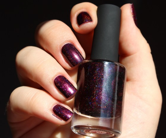 blackorchid-ilnp-fallcollection (3)