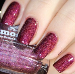 picture polish-moscow (18)