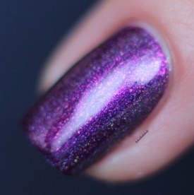 ilnp-poetry-spring collection 2015 (13)