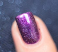 ilnp-poetry-spring collection 2015 (14)