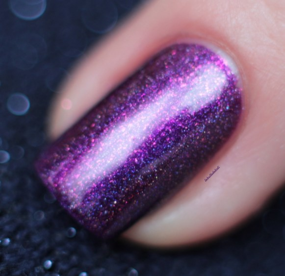 ilnp-poetry-spring collection 2015 (16)