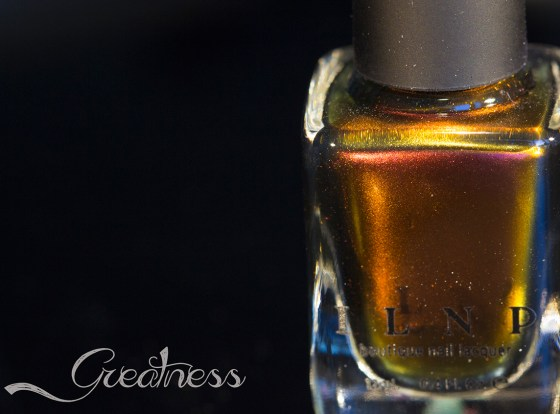 ilnp-fall collection 2015_17