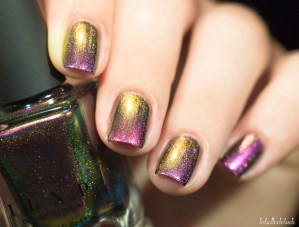 ilnp-cameo(H)-fall collection 2015_9