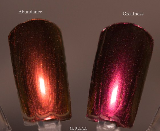 ilnp-compare-fall collection 2015_1