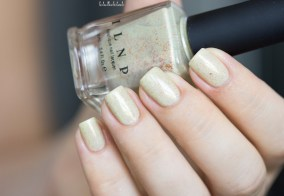 ilnp-spiced eggnog-fall collection 2015_19