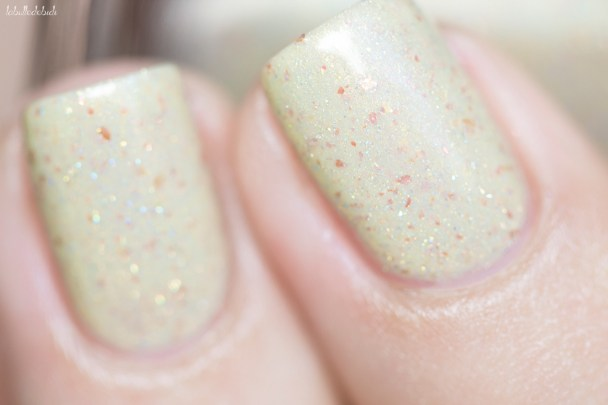 ilnp-spiced eggnog-fall collection 2015_23