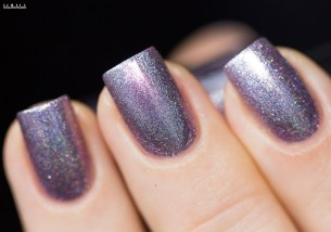 Cirque Colors-sparkled-saint cloud-in artificial light_10 (2)