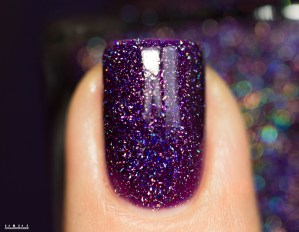 ILNP-jelly spring 2016-BFF'S_5