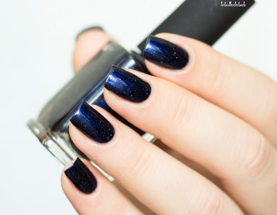 ilnp-winter-2016-looking-up_6