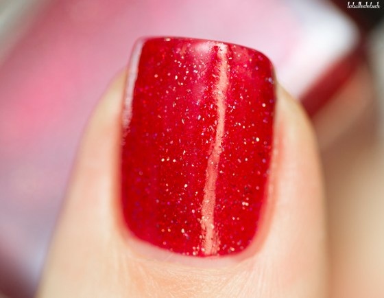 ilnp-winter-2016-stopping-traffic_14