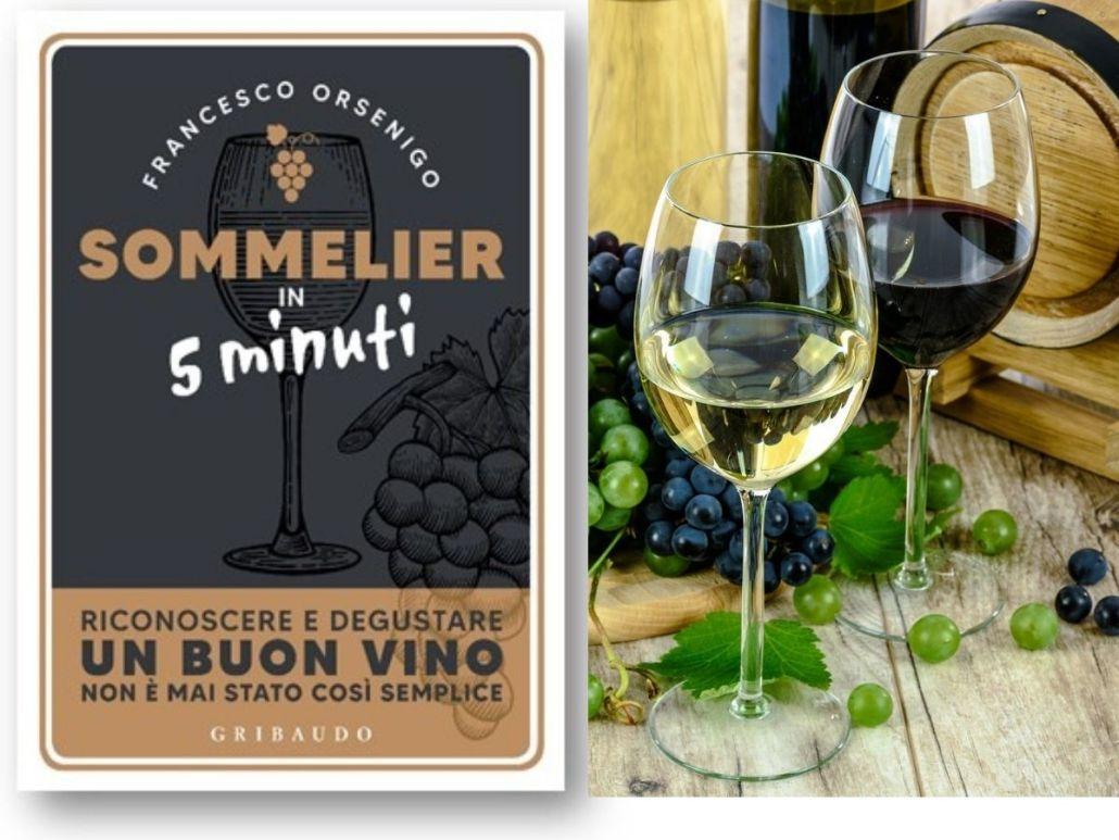 """""""Sommelier in 5 minuti. Riconoscere e degustare un buon vino non è mai stato così semplice"""""""
