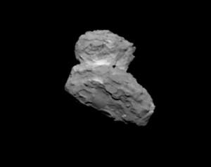 Imagen adquirida el 1 de agosto por la cámara de la nave espacial Rosetta a una distancia aproximada de 1,000 km. El punto negro es un desperfecto de la imagen. Foro: ESA/Rosetta/MPS