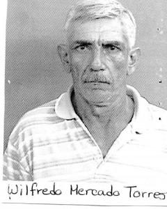 Wilfredo Mercado Torres
