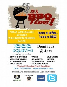 01-10-16 aquaviva domingos bbq