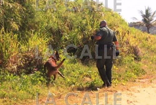 La búsqueda de los indocumentados continuaba en Rincón (Archivo).