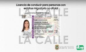 Formato de licencia para indocumentados (Suministrada).