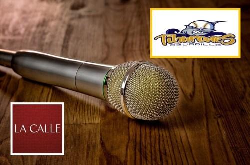 microfono-logos-1