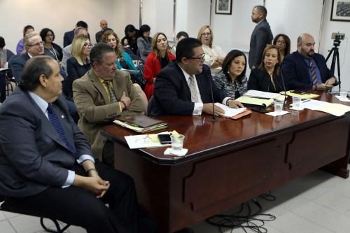 Deponentes durante la vista de la Comisión de lo Jurídico de la Cámara (Suministrada/Prensa Cámara de Representantes).