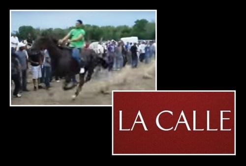 carreras clandestinas caballos 1