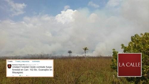 El humo y las cenizas llegaron a varios sectores de Mayagüez, Cabo Rojo y Hormigueros (Foto Facebook/Cuerpo de Bomberos