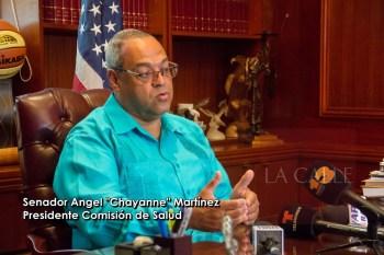 Chayanne Martinez wm