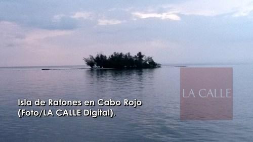 Isla de Ratones wm logo