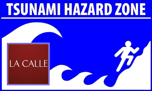 tsunami ready logo wm