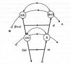 Seminar 5, Version Miller/Gondek, S. 461