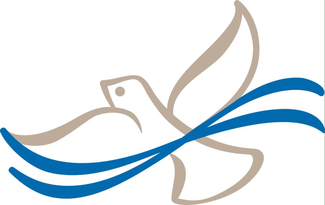 GRAPHIC - Baptism logo