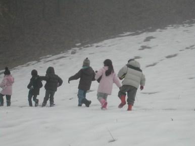 alla ricerca di tracce sulla neve