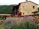 Apartaments turístics a Ribes de Freser