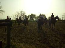 lezioni di equitazione con i cavalli cascina di carola