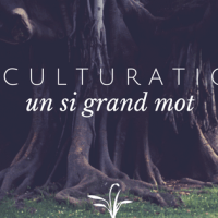 Acculturation, un si grand mot