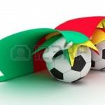 Cameroon organise la prochaine CAN!